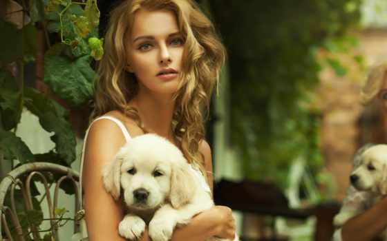 руках, девушка, щенком, щенок, щенка, держит, ретривера, разных, белого, разрешениях, золотистого,