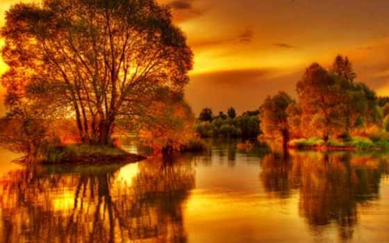 золотистый, пруд, schmidt, julius, gold, осень, reflections, слушать, badaltey,