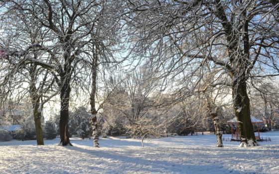 снег, природа, истинном