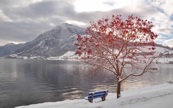 красивые, осень, природа