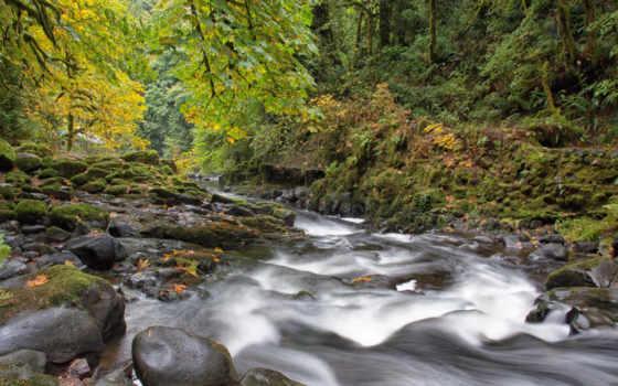 keywords, осень, река