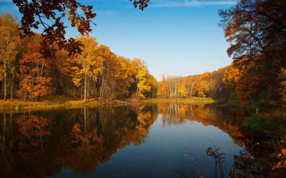 природа, озеро, лес, осень, trees, pin, краски, pinterest, песочница, леса,