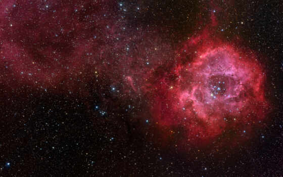 розетка, nebula, cosmos, ngc, звезды,
