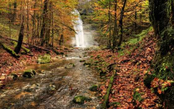 otoño, del, bosque, cascada, naturaleza, deviantart, río, rboles, burtn, осень,