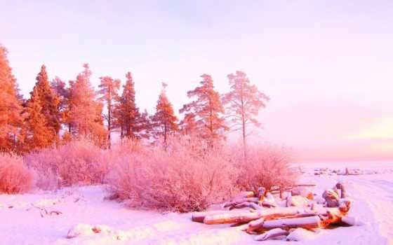 winter, розовый, прекрасная, gold, природа, resolution, розовая,