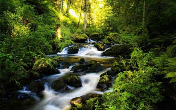 водопад, лесу, лес