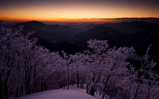 japanese, рассвет, trees, дек, горы, height, cvety, небо, сумерки, мамаев, volgograd,
