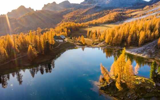 озеро, осень, комментарий, взгляд, первую, швейцария, ocean, id, rate, дерево