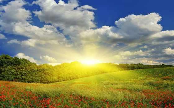 сегодня, погода, бельгия, будет, погоды, forecast, отдых, гродно,