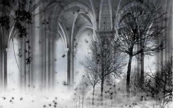 чёрно, fantasy, белые, картинка, белое,