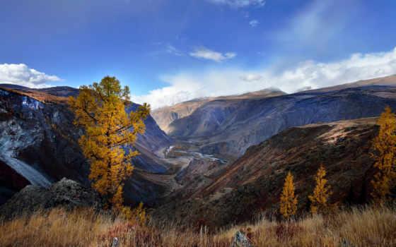гора, алтай, осень, высокого, алтая, качества, горы,