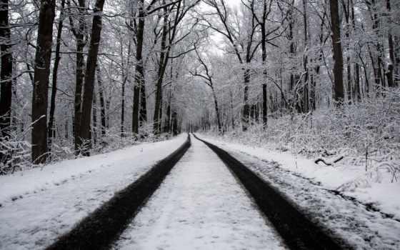 winter, дорога, лес Фон № 145168 разрешение 1920x1200