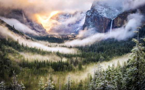 лес, мест, туман, japanese, красивых, бамбук, коллекция, загружено, хвойный,