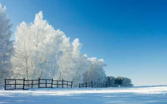 ,, зимний, небо, снег, природный ландшафт, природа, дерево, холодный, мороз, облако,
