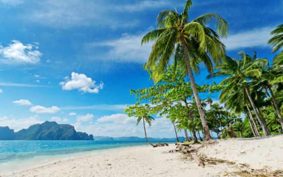 пляж, пальмы, море Фон № 101116 разрешение 2560x1600
