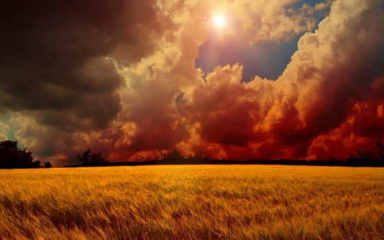 sun, oblaka, небо, поле, колосья, осень,
