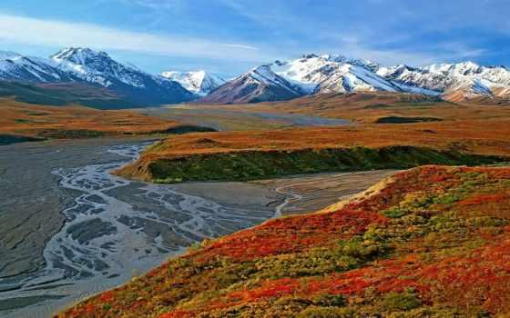 denali, аляска, national, park