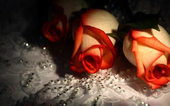 розы, цветы, красивые, roses, rose, стразы, flowers, desktop, diamonds,