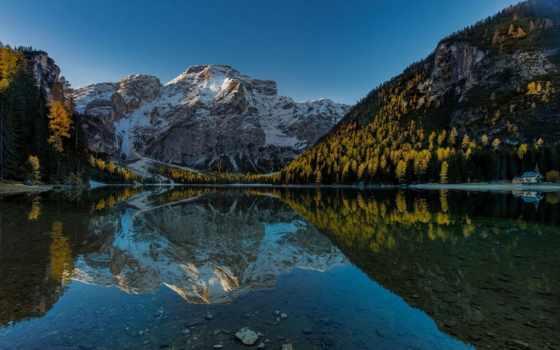 страница, incredible, landscape, лес, природа,