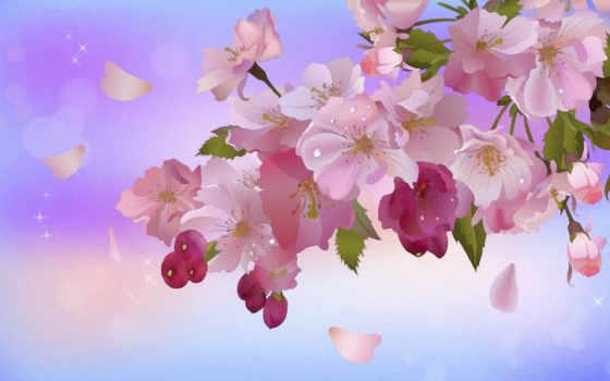 цвету, боке, сакуры, листья, яблоня, ветка,