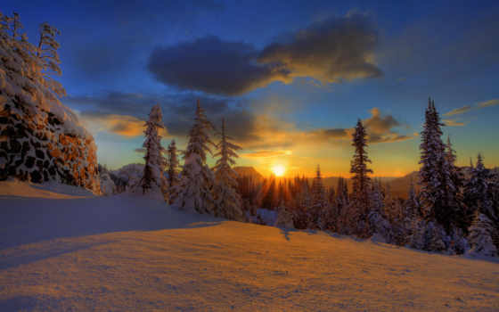 закат, лес, снег, oblaka, небо, winter, елки, природа, красавица, trees,