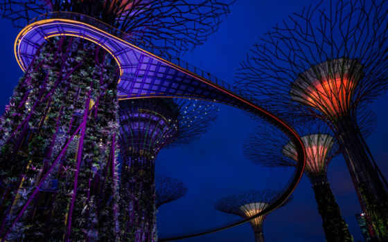 ночь, gardens, природа, bay, pictures, desktop, design, мост,