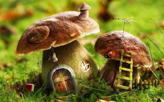 грибы, дома, грибов, house, fantasy,