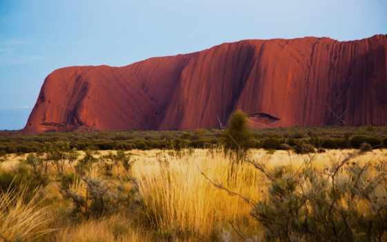 природа, австралия, улуру, айерс, пустыня, rock, утро, картинка, kangaroo, австралии,