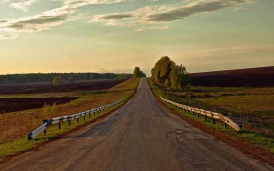 дорога, поле, природа