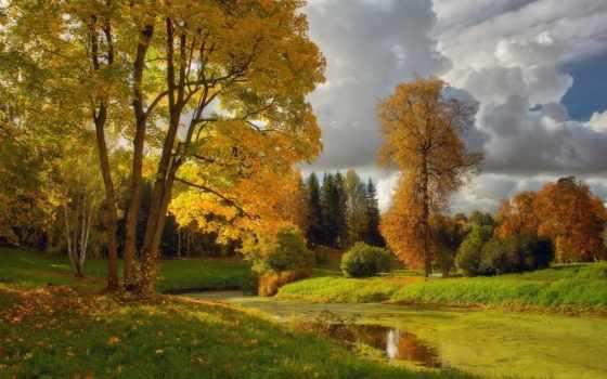 осень, утро, осени, картинок, world, анимации, trees, туман, приветом, осенним, тёплым,