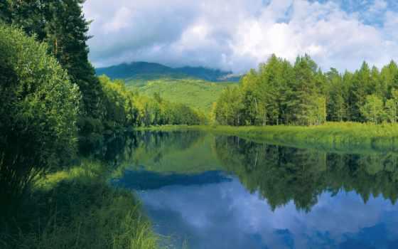water, река, trees, гладь, берег, лес, небо, oblaka, трава, summer, отражение,