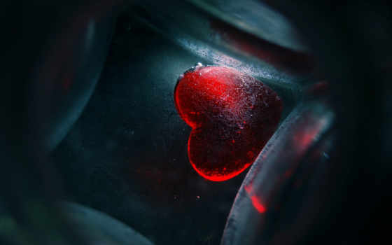 сердце, красное, fone, качестве, высоком, white, минимализм, базе,