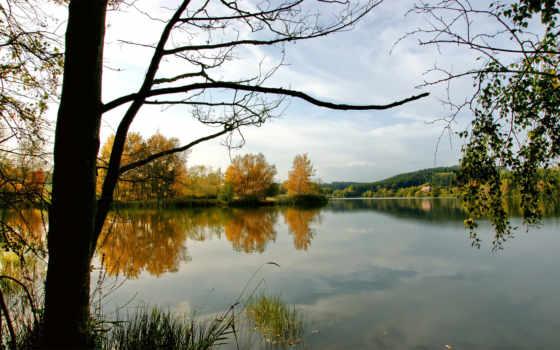 река, лес, природа, trees, water, красивый, landscape, озеро