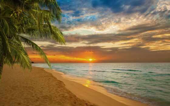 пляж, закат, море, permission, tropical, zone, горизонт, palm, ocean, природа, sun