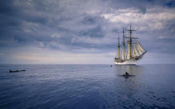 корабль, pinterest, tall, vitorlás, ships, bounty,