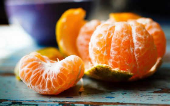 new, tangerine, палуба, плод
