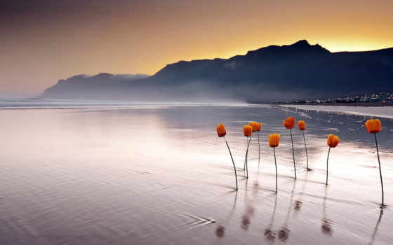 море, закат, landscape