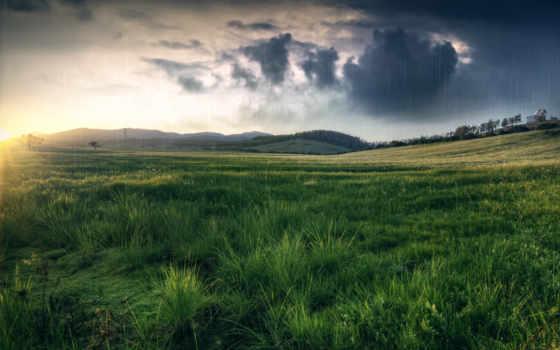 поле, трава, природа, дождь, луг, холмы, тучи,