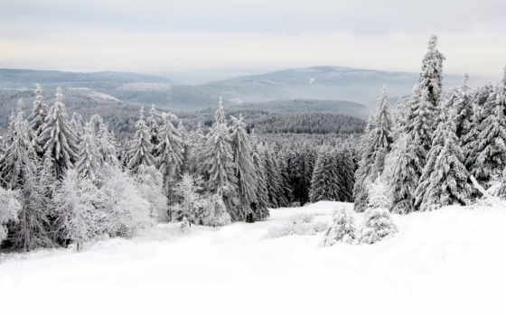 flickr, photos, winter, снег, landscape, taunusgebirge, fundal, walls, ferne,