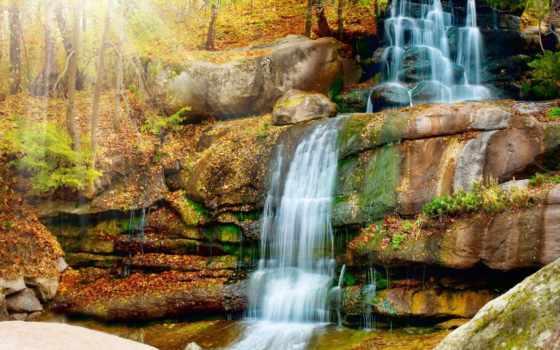 водопад, фотообои, осень, купить, лес, отличным, ценам, листва, свой, own,