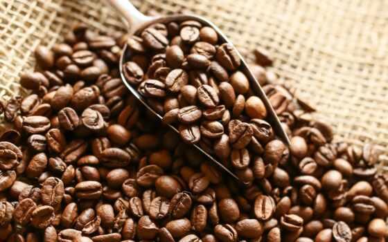 coffee, зерна, лопатка