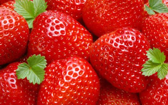 клубники, клубника, фрукты, ягода, июнь, цены, ukraine, может, выращивание, online, год,