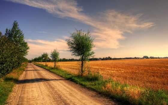 дорога, поле, landscape, trees, пейзажи -, дома, london,