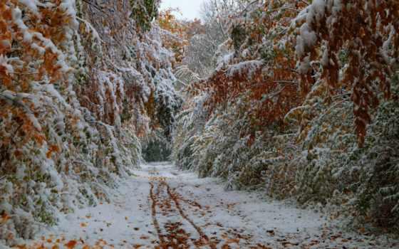 снег, winter, времена Фон № 57140 разрешение 1920x1080