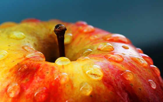 apple, красное, макро