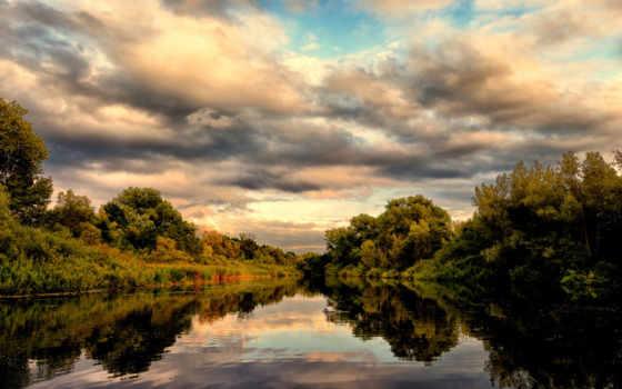 лебедь, leto, ozero, отражение, пейзажи -,