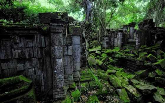 развалины, лес, jungle, старинный, trees, decay, pinterest, об,