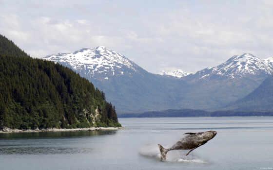 гора, природа, кит, photoshop, река, landscape, range, expand