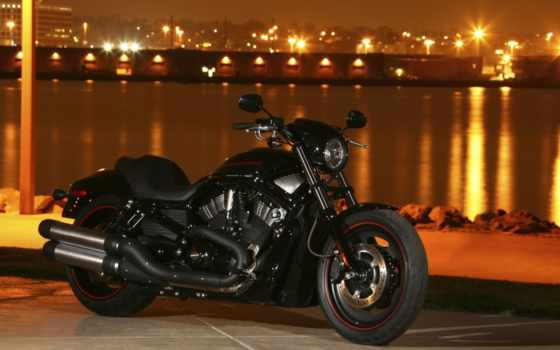 harley, davidson, rod, ночь, bike, мотоциклы, спец, vrscdx, город,