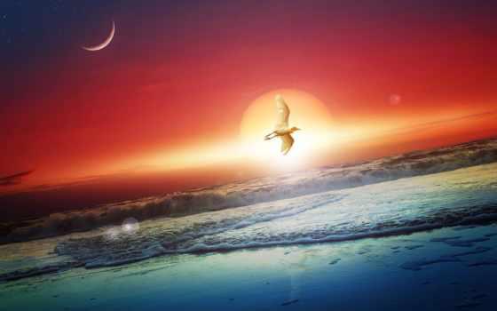 luna, сол, аль, pinturas, мар, лео, imagen, яхты, закат, cheap, свечение,